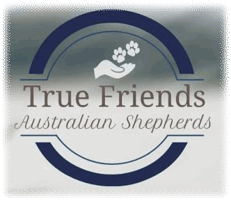 True Friends Australian Shepherd