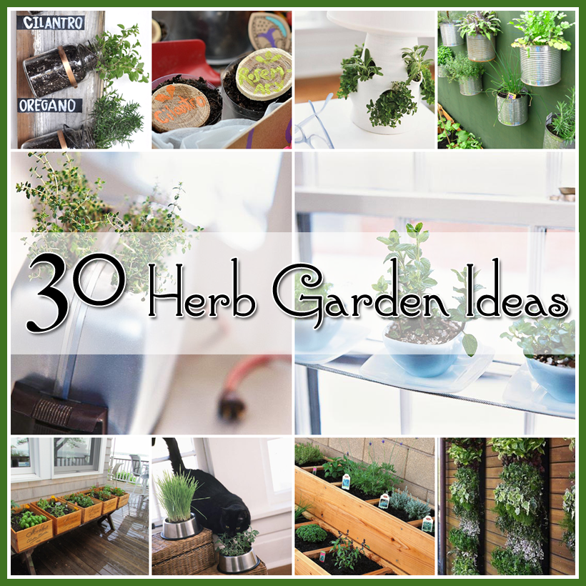 30 great herb garden ideas diy craft projects for Great garden ideas