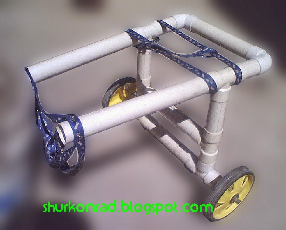 ShurKonrad perro silla ruedas dog 29