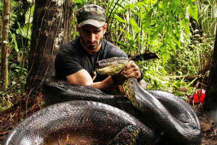anakonda, Discovery Channel, Paul Rosolie, állatvilág, PETA, Eaten Alive