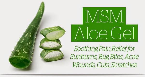 Thành phần Aloe MSM Gel Kem mát-xa