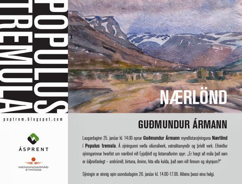 Gudmundur-Armann-web