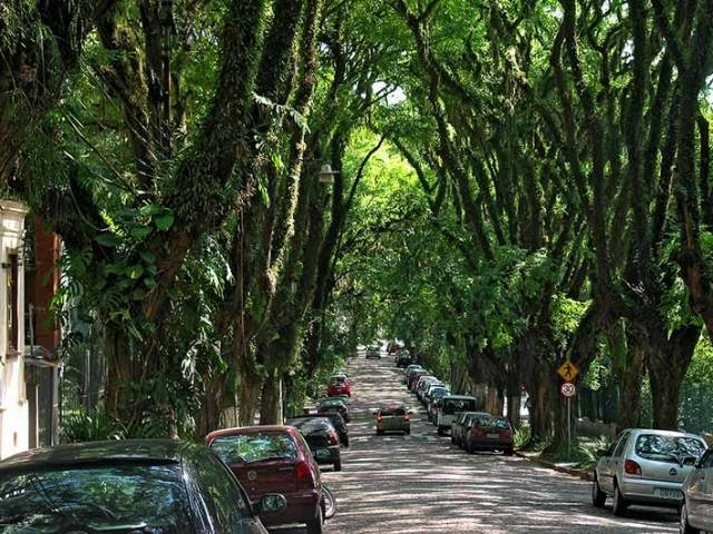 "Rua Goncalo de Carvalho is a street located in Porto Alegre, the capital and largest city in the Brazilian state of Rio Grande do Sul. Flanked by trees on either side, the street became internationally known after a campaign for its preservation spread on the   Internet leading it to be dubbed ""the most beautiful street in the world""."