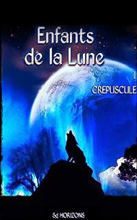 http://carnetdunefildeferiste.blogspot.fr/2015/01/enfants-de-la-lune-tome-1-crepuscule-de_24.html