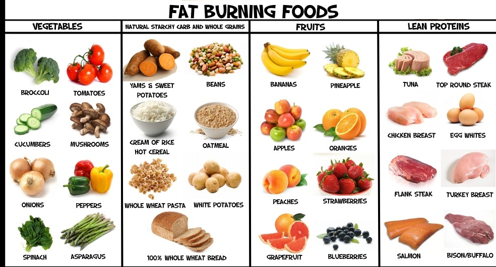 Fat burning foods south africa jobs