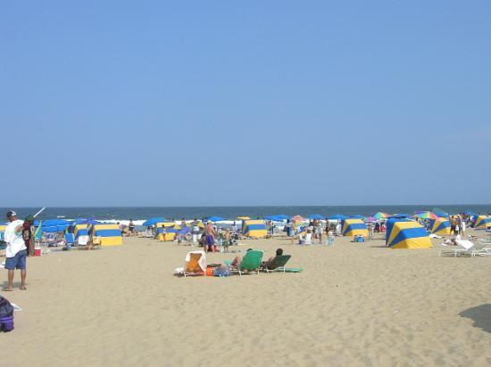The heart of Virginia Beach