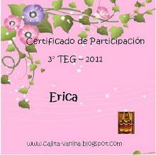Meu certificado de conclusão do Teg de Vanina