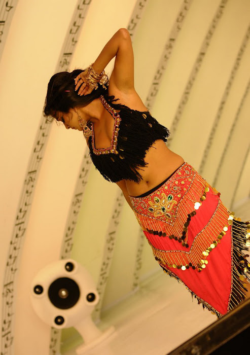 priyamani spicy , priyamani from ragada movie glamour  images