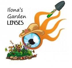 Garden Lenses