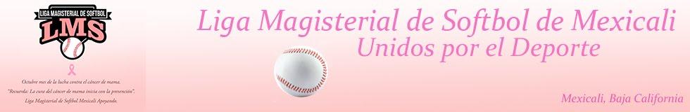 SoftBlog Magisterial