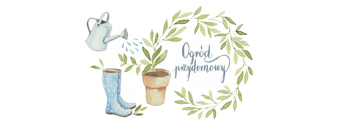 Ogród przydomowy - blog ogrodniczy, dekoracje ogrodowe