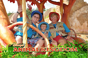 Williams Family: Benefits of Booking a Disney Land/Sea Vacation Separately