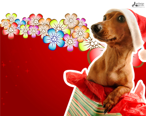Fun plannet free funny christmas wallpaper - Free funny christmas desktop wallpaper ...