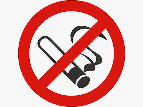 Organ Tubuh Rusak Karena Rokok