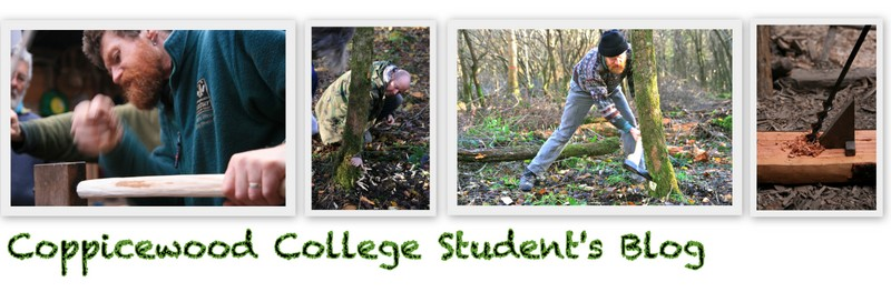 Coppicewood College Students Blog