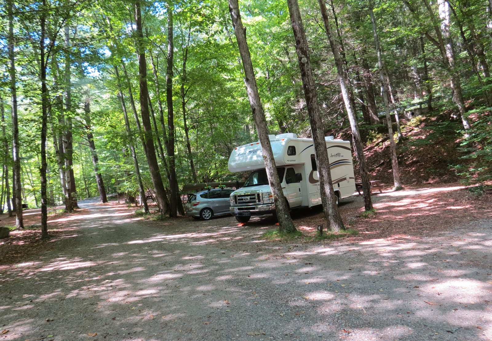 Where's Liz 20 Mohawk Trail State Forest