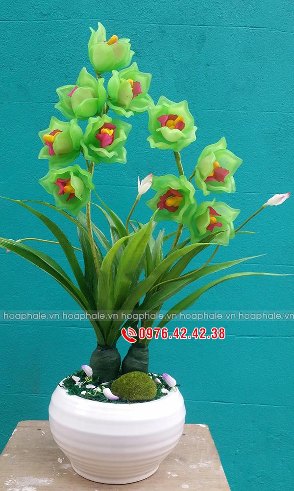 Hoa địa lan màu xanh - hoa pha lê