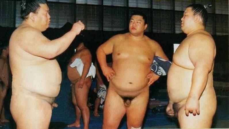 from Nikolas gay sumo