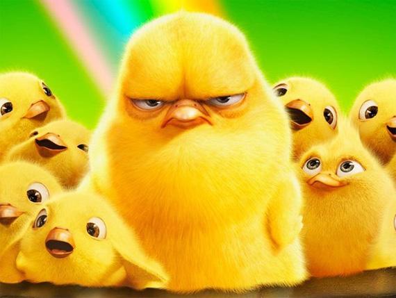 El pato salvaje Hop-movie-chicken