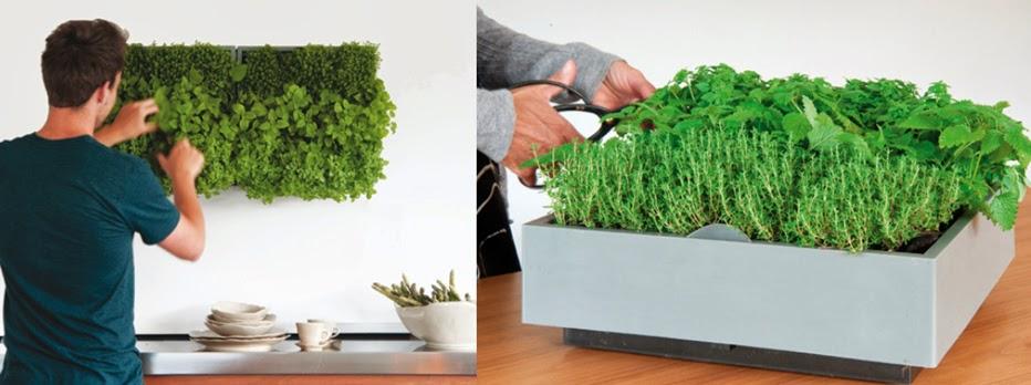 Hacer un jard n vertical con el muro verde de karoo - Como hacer un muro verde ...