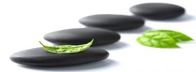 Hojas verdes de Zen, perder peso