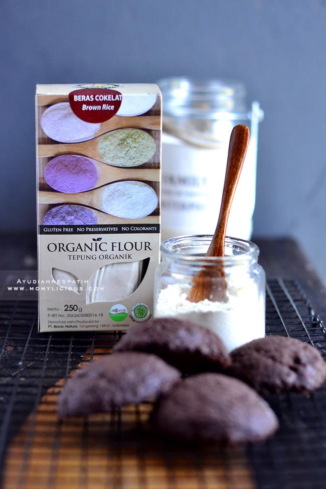Double Chocolate Chunk Cookies [gluten free]