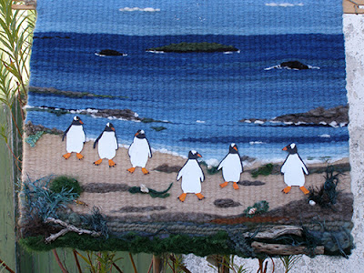 Tapestry of Gentoo penguins in the Falklands