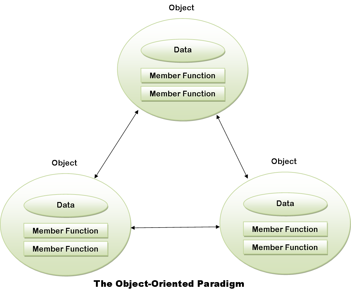 object oriented programming and data member