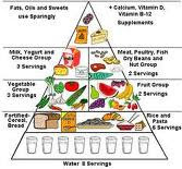 Basic Conditions Healthy Diet