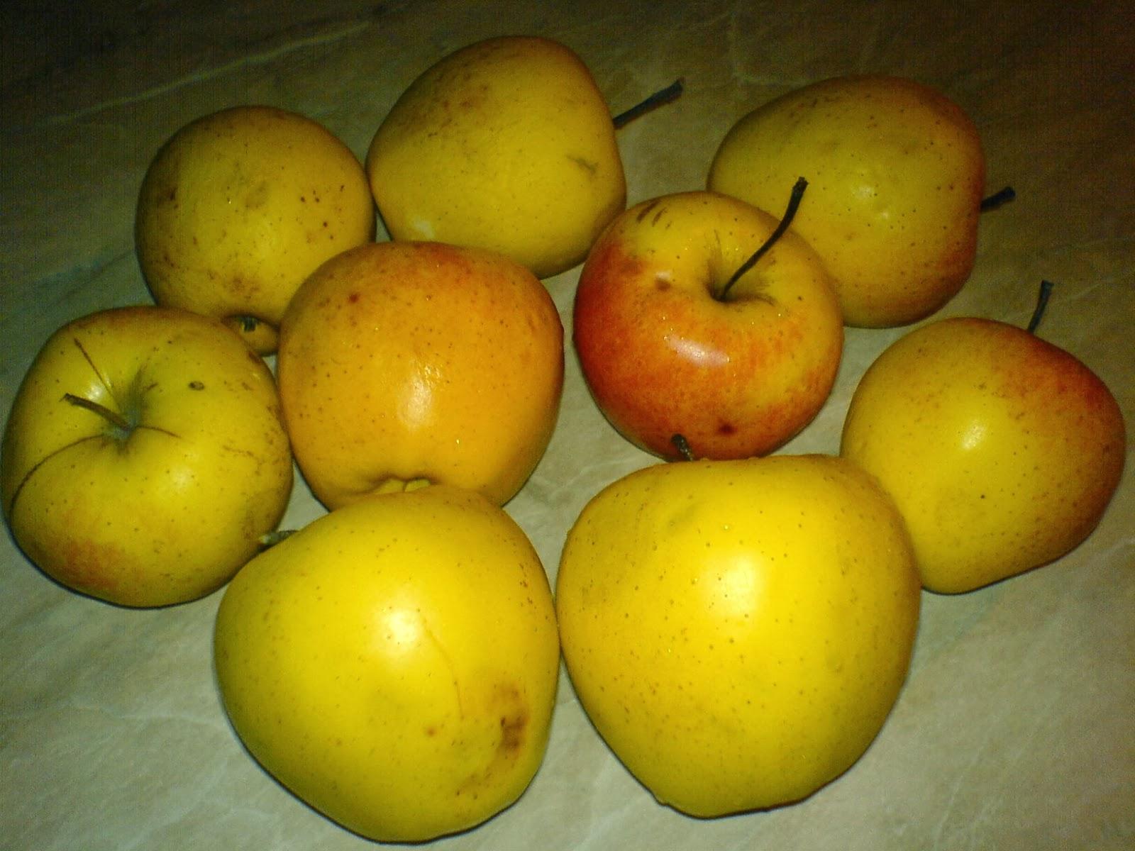 retete culinare cu fructe, mere, retete cu mere, prajitura cu fructe