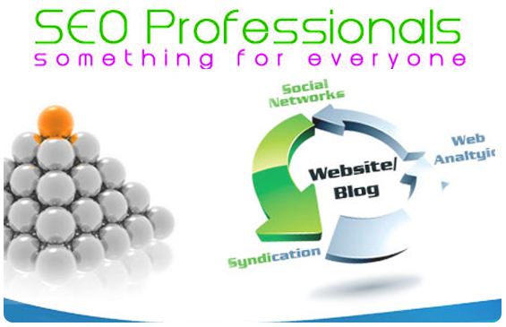 SEO Professional Do Something for you
