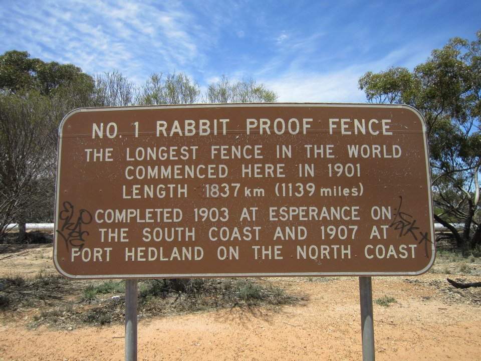 integrated essay rabbit proof fence Phillip noyce, director of rabbit proof fence not only portrays the colonial setting of the time but also treats the story with respect and understanding of the.