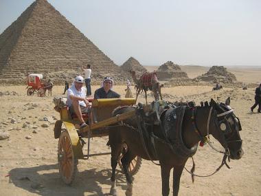 robert margetts in cairo, Egypt
