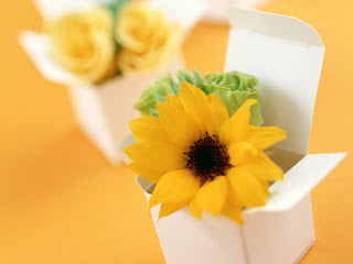 Sunflower Bouquet HD Wallpaper