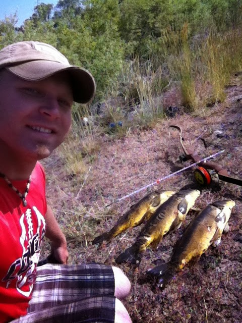 Bow Fishing Carp