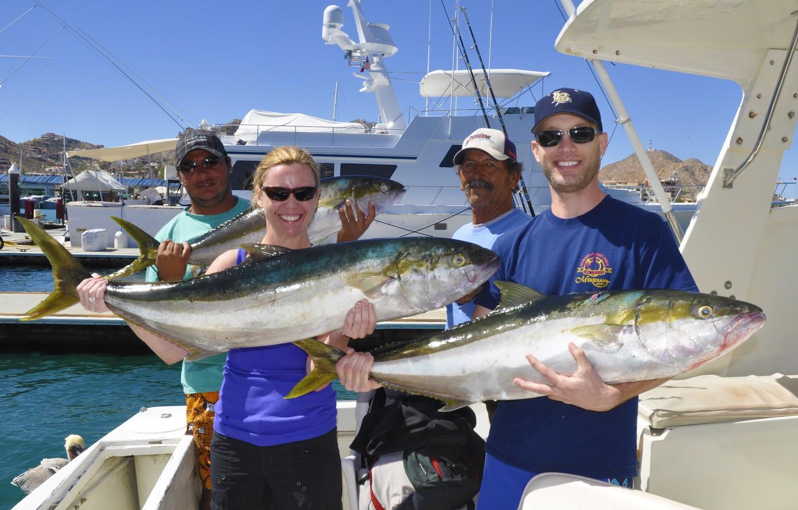 Pisces fleet sportfishing blog feb 21 2012 for Pisces fishing cabo