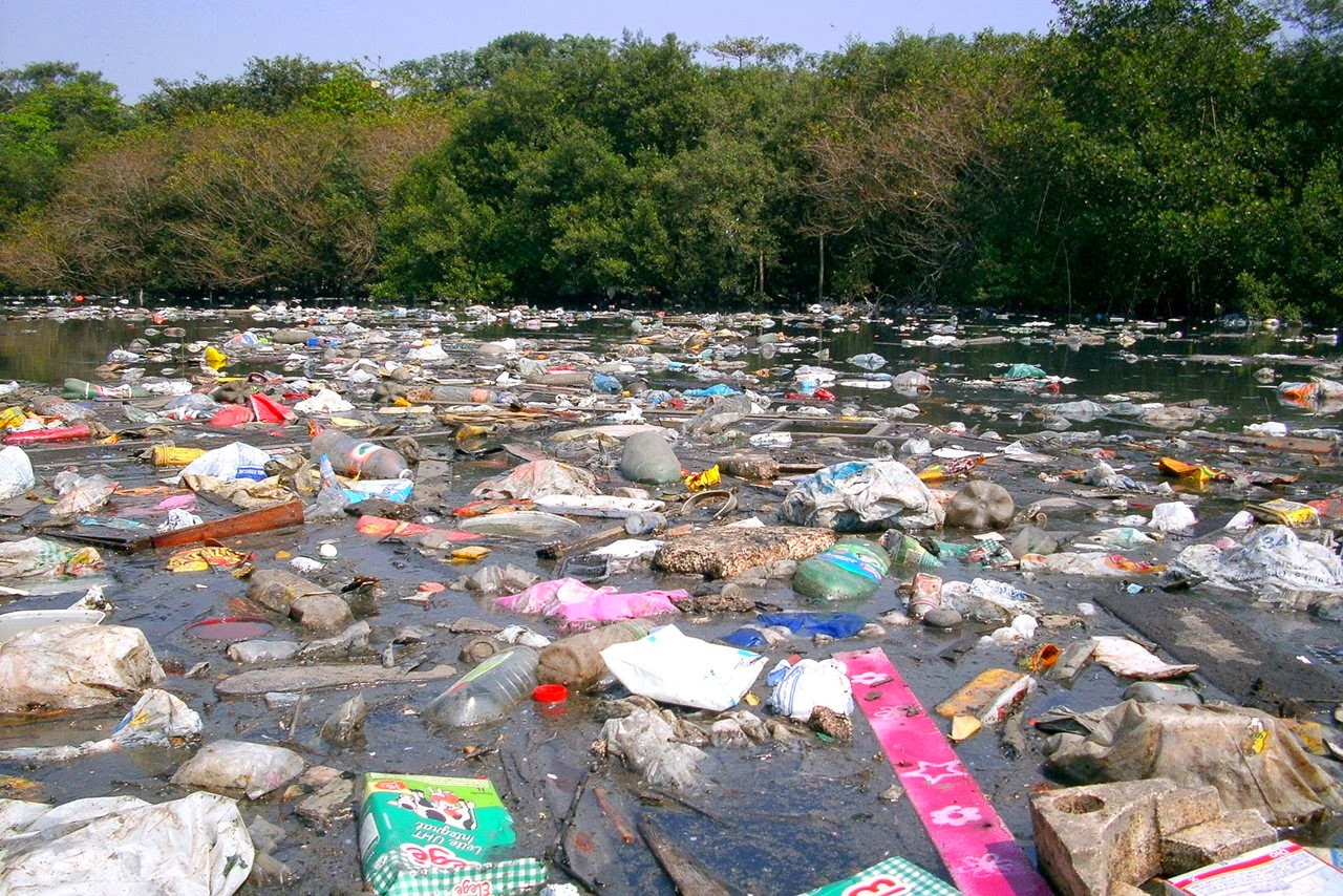 Dezenas de toneladas de resíduos são descartados diariamente no estuário de Santos. Crédito: Instituto EcoFaxina