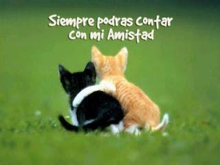 Imagenes y Frases de Amistad, parte 3