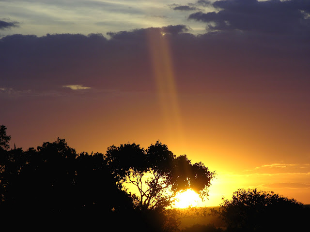 The sun in the Masai Mara