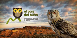 The Owl Country. El País Del Búho.
