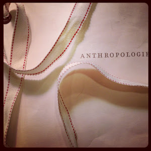 Inspired by Anthropolgie Bag