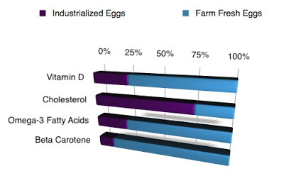 Differences Graph of Fresh Eggs and Industrialized Eggs
