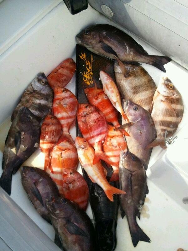 Un día de pesca con mi amigo David