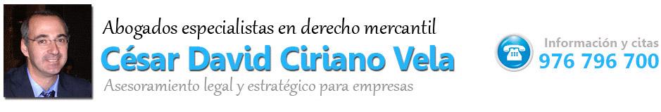 César David Ciriano Vela - Abogado mercantil en Zaragoza - Constitución de empresas, contratos etc.