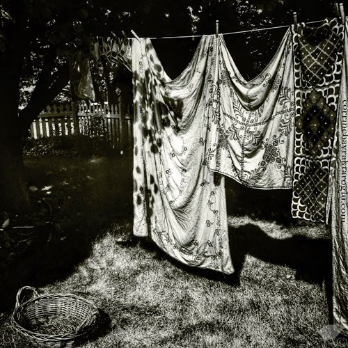 black and white photograph of washing line