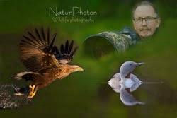 NaturPhoton
