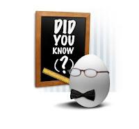professor egg at a chalkboard