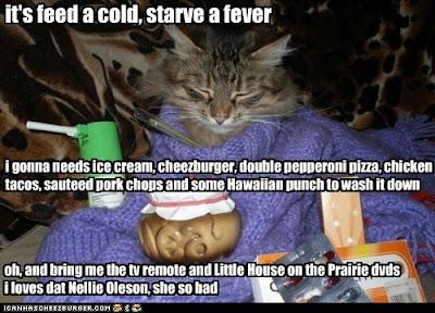 http://2.bp.blogspot.com/-yrtqYJDH6eg/T5Kzkplc4aI/AAAAAAAAp7M/aXM9otM5l18/s400/funny-cat-pictures-its-feed-a-cold-starve-a-fever.jpg
