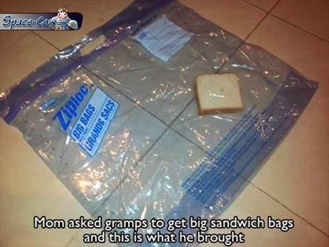 funny things bags humor