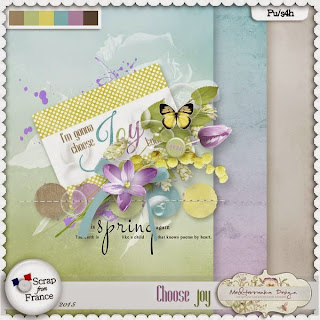 http://scrapfromfrance.fr/shop/index.php?main_page=product_info&cPath=88_279&products_id=9144